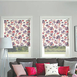 roller blinds company in brisbane